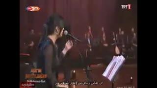 نوا خوانی خواننده ترکیه ای برای حضرت عباس