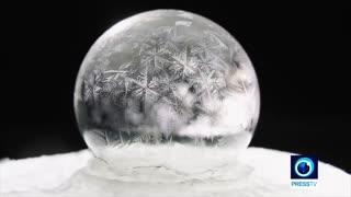 حبابهای ماندگار در زمستان سرد