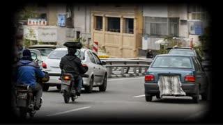 تصاویری از ورود گوسفندی تا آهنربایی به طرح ترافیک!