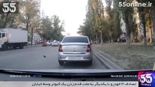 تصادف 3 خودرو با یکدیگر به علت قدم زدن یک کبوتر وسط خیابان