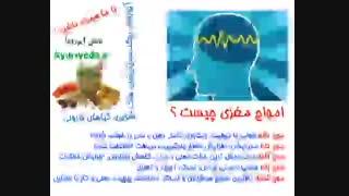 امواج مغزی چیست؟
