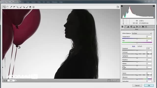 آموزش عکاسی  -آموزش گرفتن عکس سیلوئت ( ضد نور ) با یک شاخه نور
