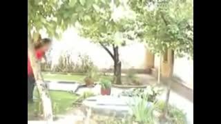 اهنگ، بابا اُمده ،سندی ،ته خنده:)))