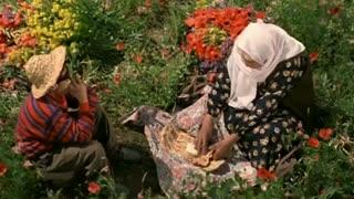 """کلیپ  با ترانه ی فوق العاده زیبای""""خدا با ماست- با فیلم ایرانی رنگ خدا"""