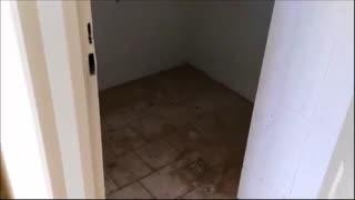 فیلم آپارتمان یک خوابه پروژه سامان