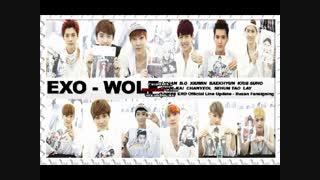 متن آهنگ Wolf از گروه Exo