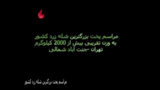 مراسم پخت بزرگترین شله زرد کشور، مجری طرح سید مسعود بنی حسینی
