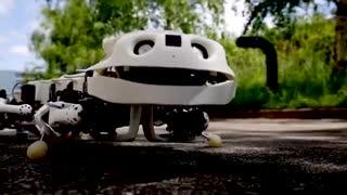 رباتی که قادر به بازسازی حرکت مهره داران است