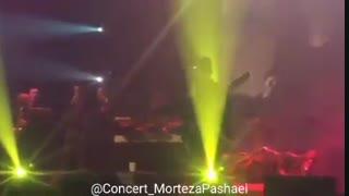 کلیپی کوتاه از اجرای اهنگ نبض احساس توسط مرتضی در کنسرت تهران(تقدیمی)(توضیحات مهم)