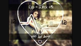 عشق بی کلام-قسمت13