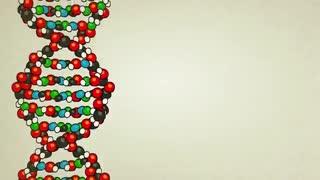 DNAچیست و چگونه کار می کند؟