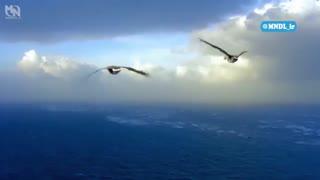 مستند روسیه از فراز آسمان با دوبله فارسی - قسمت 2