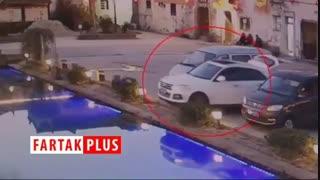 سگی که ماشین صاحبش را غرق کرد