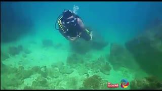 غواصی در آب های جزیره کیش
